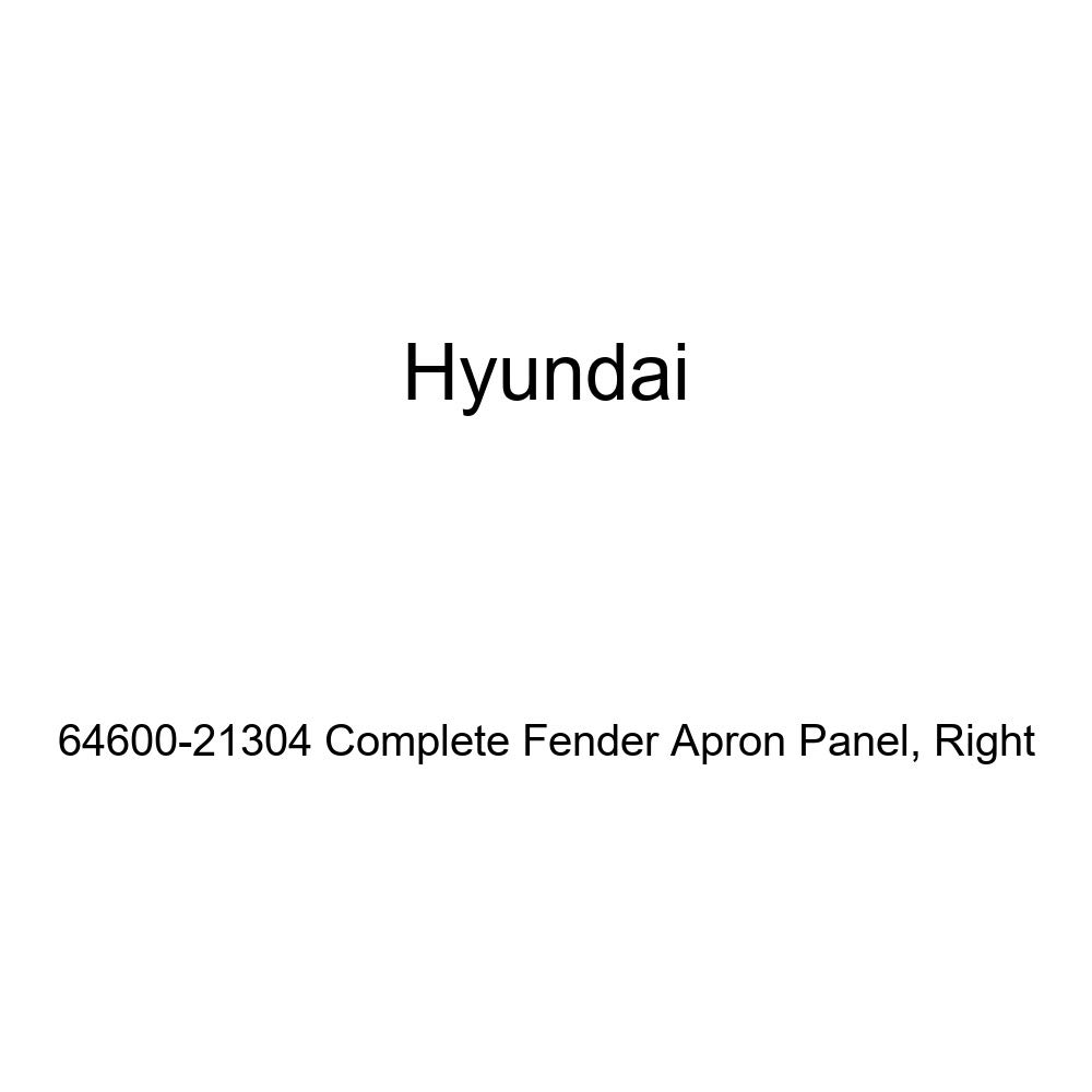 Right Genuine Hyundai 64600-21304 Complete Fender Apron Panel