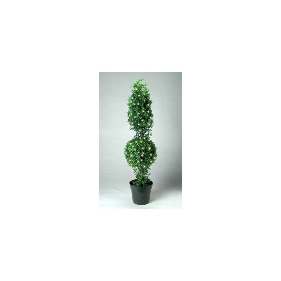 Tree Company LBXT 300 48 48 Inch Boxwood Cone and Ball Topiary