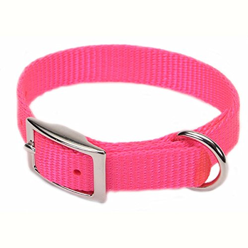 Coastal Pet Products DCP40112NPK Nylon Dog Collar, 5/8 by 12-Inch, Neon Pink
