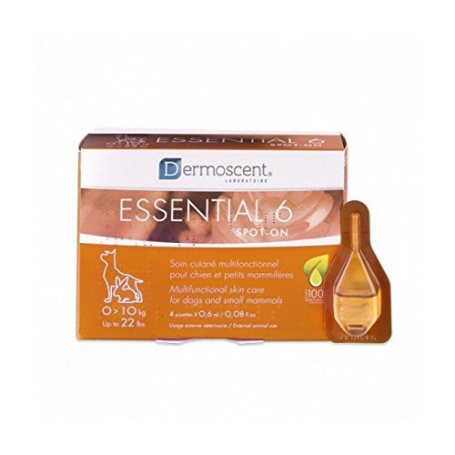Dermoscent Essential 6 Spot-On Skin Care for Small Dogs Up To 22 lbs, 4 Tubes (0 - 10kg)