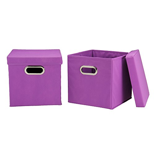 Household Essential 38-1 Cube Set-KD 2pc with Lids-Purple