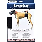 GingerLead Dog Support & Rehabilitation Harness - Tall Female Sling for Tall, Lean Dogs - Ideal for Aging, Disabled, or Injured Dogs Needing Assistance with Their Balance and Mobility