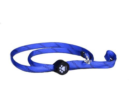 Aviditi BL202-M LED Lighted Dog Leash, Blue with Blue LED Lights, Medium, My Pet Supplies