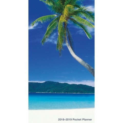 Trend Micro BEACHES 2 Year Monthly Pocket Planner 2018-2019