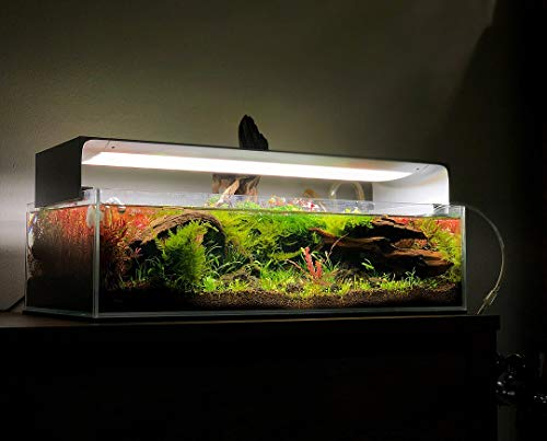 ONF Flat One Aquarium Light 24 inch or 36 inch, Blue and White LED, APP Remote Controlled, Dimmable Full Spectrum for Plant Growth, Saltwater Freshwater