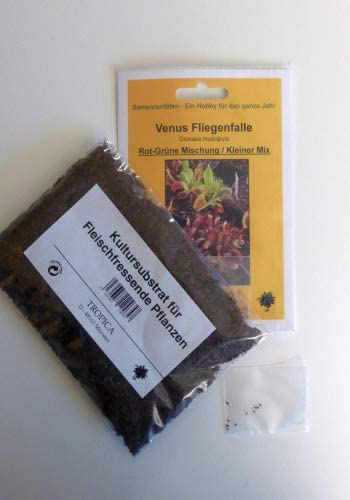 10 Samen//inkl.Karnivorenerde Dionaea muscipula Venus-FliegenfalleRot-Gr/üne Mischung Kleiner Mix