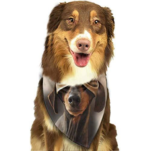 Custom Made Dog Bandanas, Triangle Bibs Reversible Printing Dog Kerchief Set,-Dog Flyer Pattern Printing Colorful -