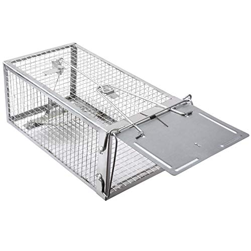 Gingbau Humane Rat Trap Live Chipmunk Mouse Cage Trap for Indoors and Outdoors