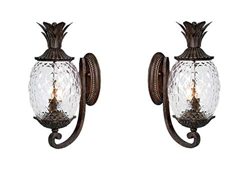 Lanai Collection 2-Light Wall Mount Outdoor Light Fixture, Black Coral - 2 Pack