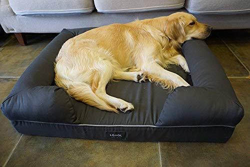 Foam-Dog-Bed