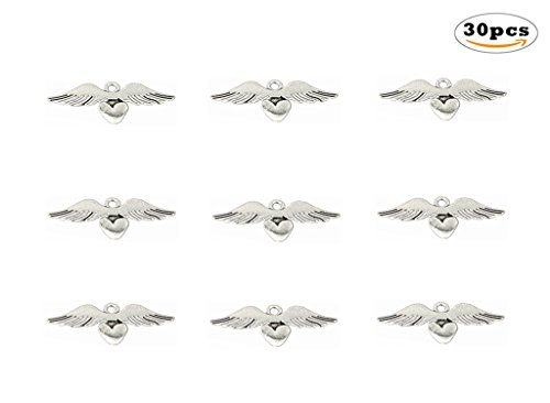 Double Heart Charm Jewelry (30pcs Loving Heart Angel Wing punk Charms Pendants for DIY Jewelry Making Accessories(Antique Silver) By Alimitopia)