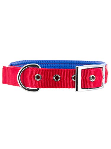 Kakadu Pet Orbit Padded Nylon Dog Collar, 1-Inch by 24-Inch, Red with Blue Trim