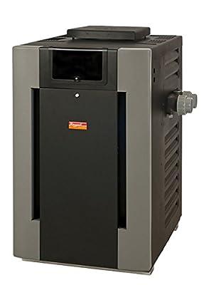 Raypak 009219 Digital With Polymer Headers Heater