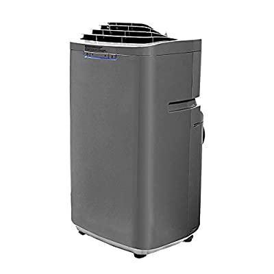 Whynter 13,000 BTU Dual Hose Portable Air Conditioner (ARC-131GD)