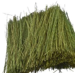 Grass Field Green Light (JTT Field Grass, Light Green JTT95086)