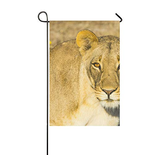 (NQEONR Home Decorative Outdoor Double Sided Wildlife in Nxai Pan National Park Garden Flag,House Yard Flag,Garden Yard Decorations,Seasonal Welcome Outdoor Flag 12 X 18 Inch Spring Summer Gift)