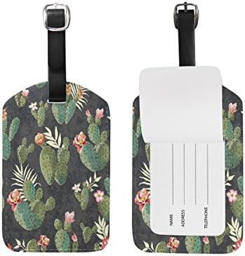 9c2edfd89315 Use4 Retro Tropical Cactus Luggage Tags Travel ID Bag Tag for ...