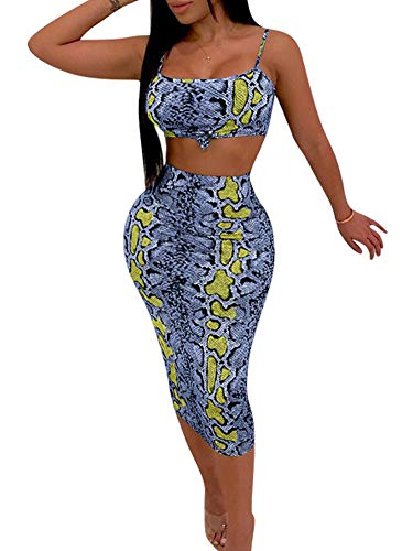- Women 2 Piece Outfits Chic Animal Skin Print Tank Top Long Pants Clubwear Set S Blue