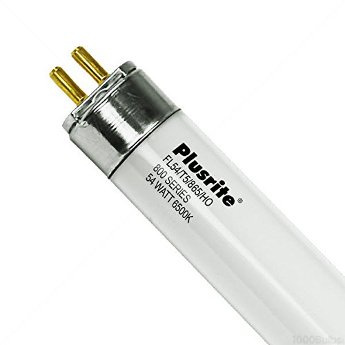 Plusrite 4129 FL54/T5/865/HO Mini Bi-Pin 45.2-Inch Fluorescent Lamps-1 Piece