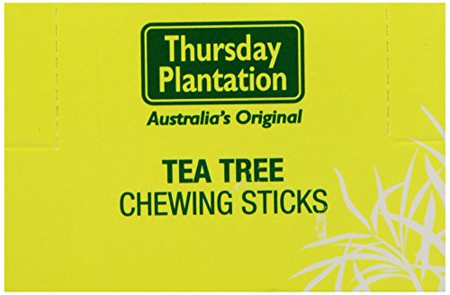 (Nature's Plus 6 Tea Tree Toothpicks Original, 100 Count)