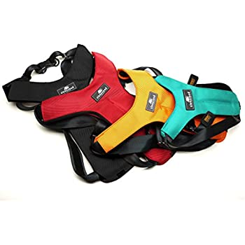 Sleepypod ClickIt Sport Crash-Tested Car Safety Dog Harness (Medium, Jet Black)