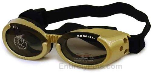 Doggles ILS Interchangeable Lens System Gold Frame/Smoke Lens, Sizes: Large