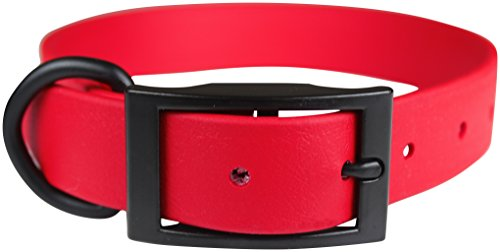 omnipet-zeta-regular-dog-collar-with-black-metal-hardware-1-x-22-red