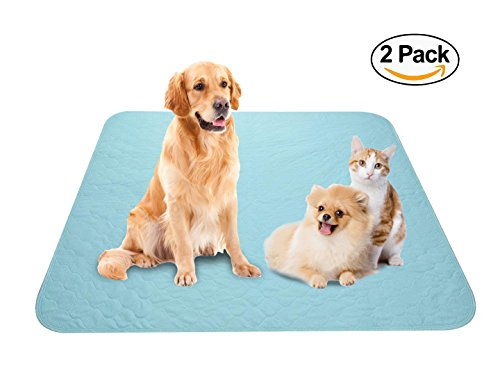 Disposable Pads Insert (Washable Reusable Pee Pads Paws of Mind 2-Pack Large 36 x 32 Leakproof Waterproof Fast Absorbing Odor Control, Dog Training Whelping, Senior Incontinence & Kid Bed Wetting, Protect Floor Furniture Car)