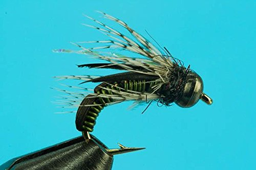 - Big Y Fly Co One Dozen Fishing Flies-Hot Wire Caddis (Olive, 14)