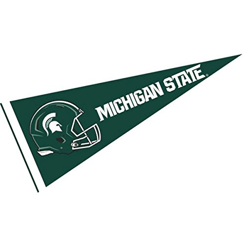 College Flags and Banners Co. Michigan State Spartans Football Helmet 12