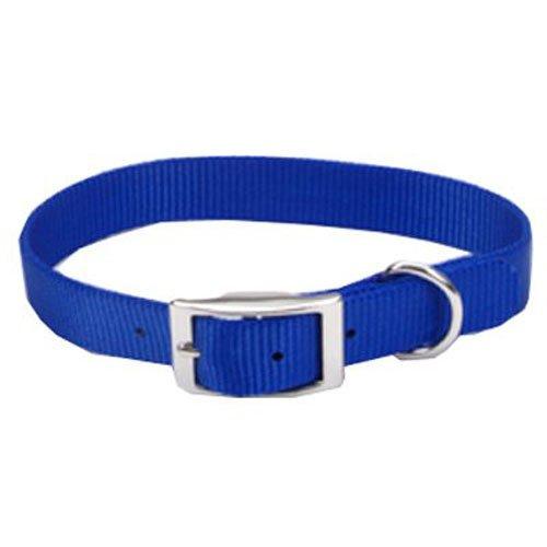 Coastal Pet 00601 B BLU18 Nylon Collar, 3/4 by 18-Inch, (Single Ply Dog Collar)