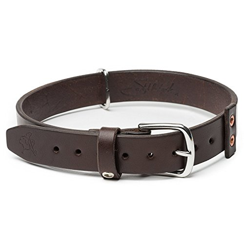 Saddleback Leather Co. Tough Full Grain Leather Dog Collar for Neck and Walking Includes 100 Year Warranty ()