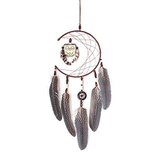 BINIDUCKLING Dream Catcher Feather Unique Handmade Wall Hanging Ornament Room Decoration Owl
