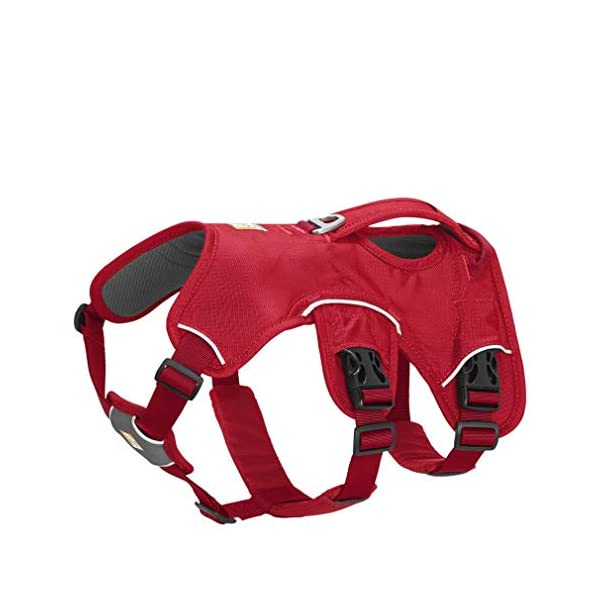RUFFWEAR - Web Master, Multi-Use Support Dog Harness, Hiking and Trail Running, Service and Working, Everyday Wear 1