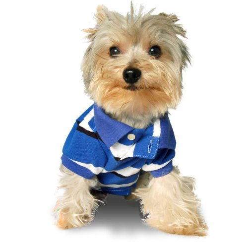 Size #10, Designer Dog Clothes, Preppy Pet Polo Shirt, College Blue Stripe, 100% Cotton