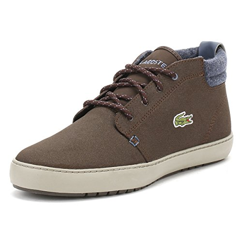 Brown Men 1 Trainers Terra Ampthill Lacoste 417 CAM Leather Brown PqOzzwZ