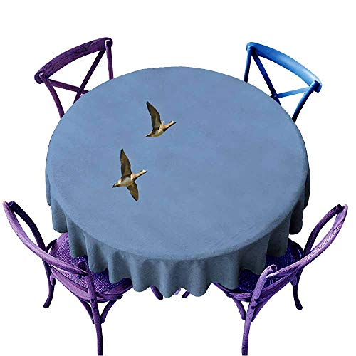 Acelik Spillproof Tablecloth,American Wigeons Flying in a Blue Sky1,for Events Party Restaurant Dining Table Cover,43 INCH ()