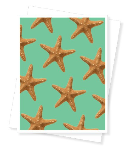 Starfish, Blank Note Cards - Set of 10 Greeting ()