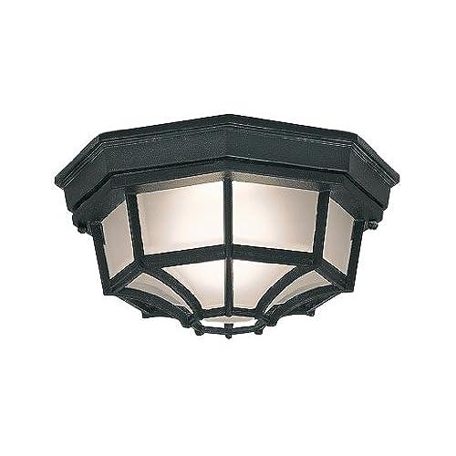 Outdoor ceiling lights amazon workwithnaturefo