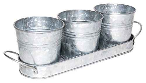 Vintage Finish Planter Pot Set | Galvanized Flower or Herb Pot Set with Tray/Caddy (Breakfast Ideas Setting Table)