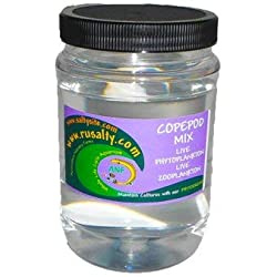 AQUACULTURE NURSERY FARMS Copepods Mix Variety of 5 pods 32oz 12,000 + Pods Tisbe Acartia Parvo Pseudo Apocyclops Live Aquarium Fish Food