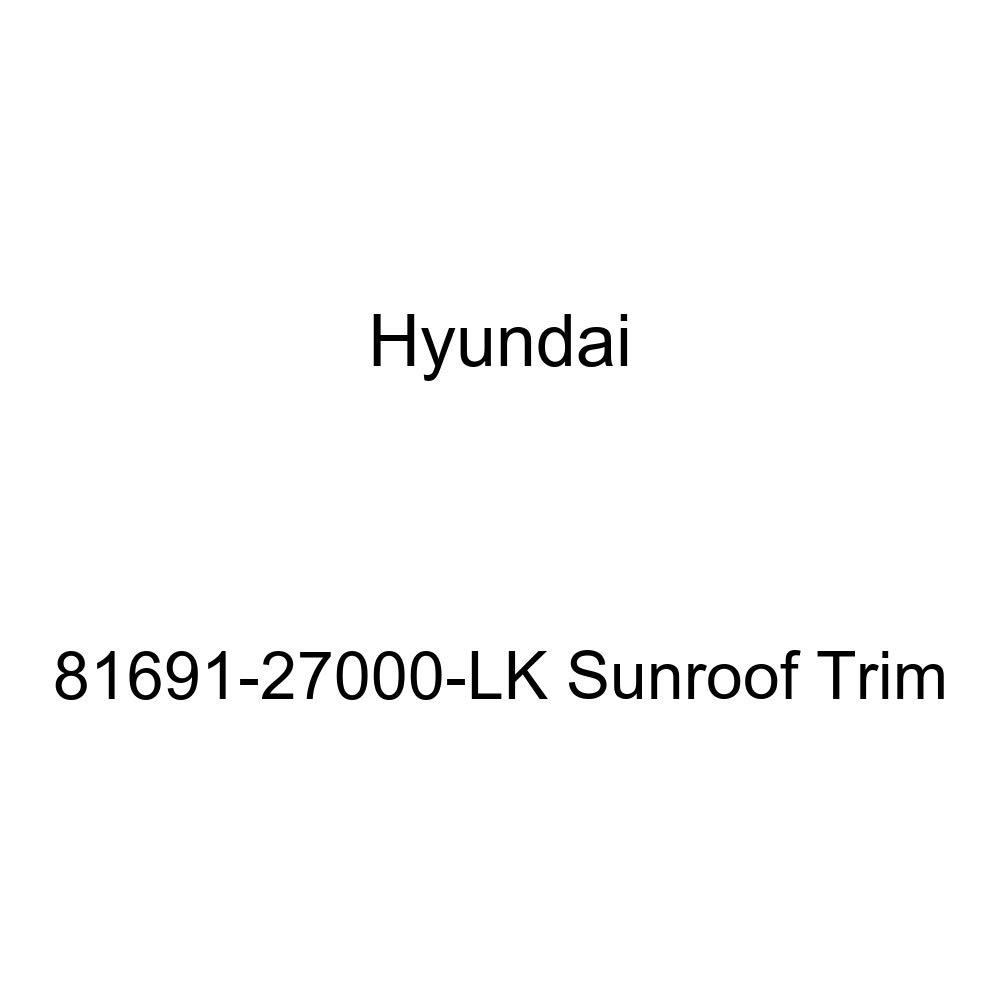 Genuine Hyundai 81691-27000-LK Sunroof Trim