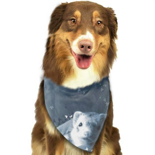 Cecil Beard Dog Bandana Triangle Bibs Ferrets Lovely Dream Bright Coloured Scarfs Accessories for Pet Cats and Baby Puppies