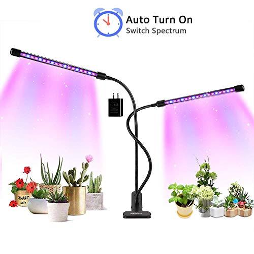 House Garden Plant Light