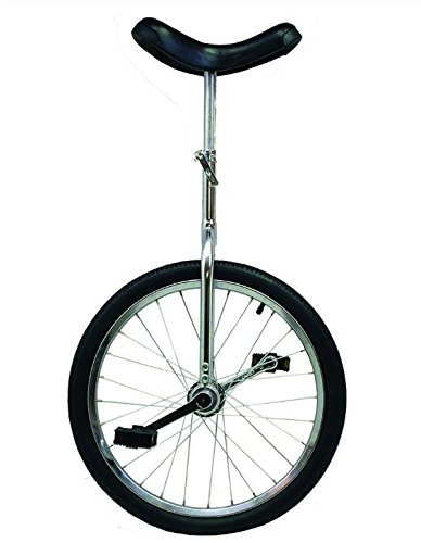"UNICYCLE 20"" X 1.75"" UNI CYCLE CHROME"