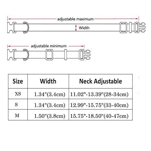 Z/&S Multi-function intelligent detachable anti-skid lighting alarm radio cane umbrella trekking pole charger + charging line + manual + certificate + warranty card