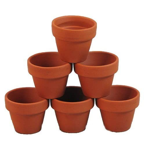 "10 - 2.5"" x 2.25"" Clay Pots - Great for Plants and Crafts"