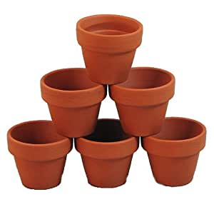 """10 Mini 1 3/4"""" Clay Pots - Great for Plants and Crafts"""