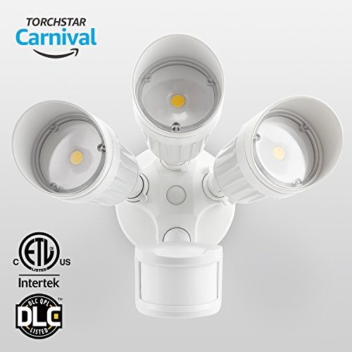 outdoor lights electric - 4