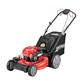 Craftsman M310 163cc Briggs & Stratton 725 exi 21-Inch 3-in-1 RWD Self-Propelled Gas Powered Lawn Mower with Bagger 103 POWERFUL 163CC OHV GAS ENGINE: Powerful Briggs & Stratton engine equipped with recoil and ready start-just pull to start! 3-IN-1 CAPABILITIES: Unit has side discharge, rear discharge, and mulching capabilities. REAR WHEEL DRIVE: Provides more traction and the ability to operate over hilly terrain.